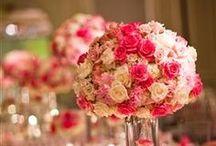 Florals / Blend of concepts