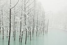 AMBIANCE I Winter & Christmas