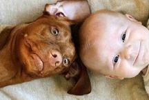 Cuteness Overload / Awwwwwww! / by Jackie Bowers Riker