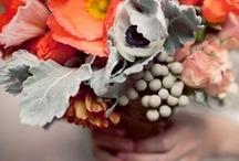 { EYE CANDY } flowers / by Inês Seabra