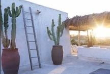 { DREAMY } beach house / by Inês Seabra