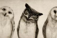 art and weirdnesses / by pidoubleg