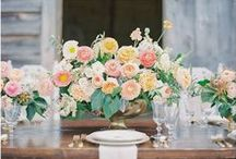 Centerpieces / by Social Butterfly