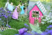 fairy gardens / by Sandra Sandoval
