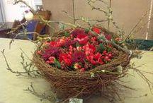 Nests / I love spring! and I love birds nesting.
