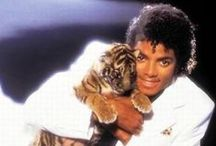 Michael Jackson / by Carole C Dixon