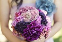 Florals: Purple / by Social Butterfly