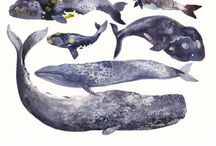 """""""And God Created Great Whales"""" / Whales are my absolutely favorite animals. / by Melanie"""