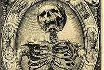 skeletons in my... / by Joseph Phillips