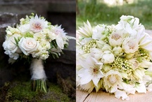 Bride Bouquets / by Barb Augustynowicz