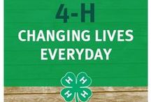 UTAH 4-H & YOUTH / Anything and everything 4-H!