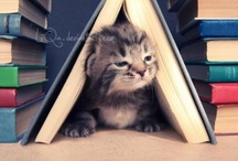 Bedside Reading - Books & Cats / by Rebecca