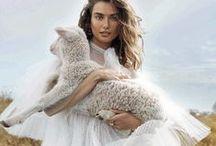 Fashion & Furballs / - Editorial Love -