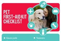 Pet Infographics / Pertinent information for pet lovers. / by ASPCA Pet Health Insurance