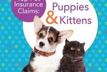 General Pet Care / Top tips to help you care for your canine and feline friends / by ASPCA Pet Health Insurance