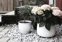Outdoors / ...home courtyard inspiration plus beautiful outdoor spaces. / by Melinda (Mode et Maison)