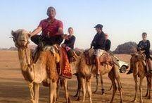 Highlights of Jordan: Arvind Passey / Follow our #TravelAdventurer, Arvind Passey on his journey to #Jordan! #GrabYourDream