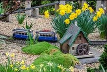 Train Gardens / Gardens with model trains and villages set up.