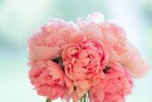 flower idea