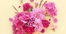 ❁ Flower Power ❁