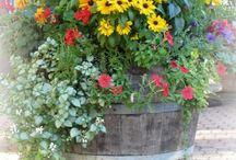 Garden, Porch & Patio Gems / by Ilene Irvin