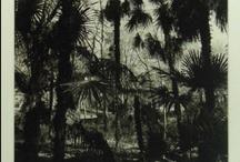 Fotografie / Photography / Foto's uit onze collectie. Zwart wit en kleur, analoog en digitaal.
