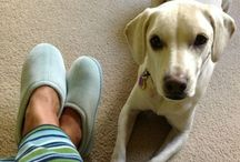 Nature's Sleep Slipper Love / Great Posts from our customers who love Nature's Sleep Slippers!