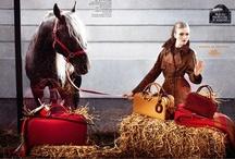 Le Monde d'Hermès - Horse