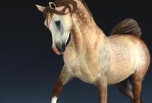 Model horses / FOR MY WONDERFUL TREASURE SAARA