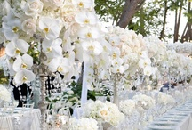Inn-dulge / This board is full of Over-the-Top wedding ideas