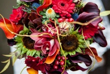 Inn-spirational Board Fall Wedding / All about Autumn