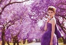 .purple. / by Jessie