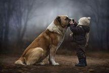 animal wuv / by Mollie Lynn