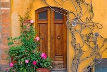 Carissima Italia