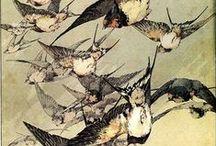 * Taide - linnut * / by * Marie Josefine *