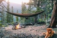 Camping / Everything and anything camping