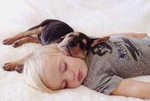 Unique Sleeping Positions / Our pets sure know how to take a snooze.... Unique sleeping positions at their finest