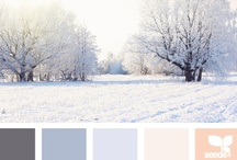 Colours. / by Lauren Froese