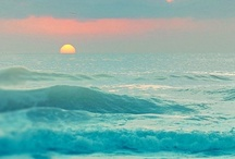 Ocean   Where I Belong / cool photos of the ocean & amazing sunsets