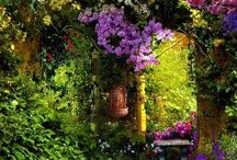 Secret Garden / Of adventure and love and the journey of a heart <3