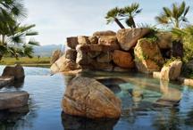 Backyard Inspiration / by Sean Knight Custom Homes