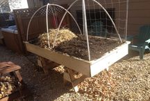 Garden beds from ABYF / by A Backyard