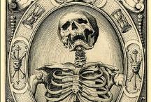 Engraving Morte / #engraving #oldart / by Waldez Sneg