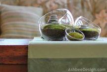 Moss design