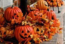 Halloween / by Janet Woodward