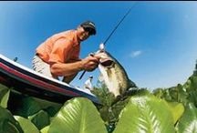 Fishing / We have the perfect fishing gear for the anglers in your life.  / by Cabela's