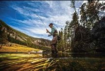 Fly Fishing / by Cabela's