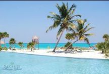 Secrets Maroma Beach Riviera Cancun / by Secrets Resorts & Spas