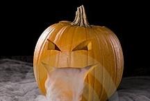 halloween / by Betsy Brenizer