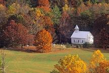 I love a church. / by Judy Taylor